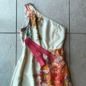 Gorgeous JCrew dress!